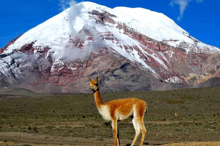 El Chimborazo by Viajando X