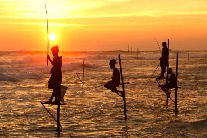 Pecadores zancudos frente al atardecer de Sri Lanka by Sri Lanka Tourism