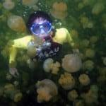 medusas_kakaban Nadar con medusas en Indonesia