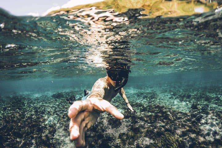 buceo Nadar con medusas en Indonesia
