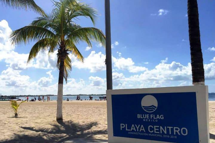 Blue Flag en Playa Centro Foto TVQRoo
