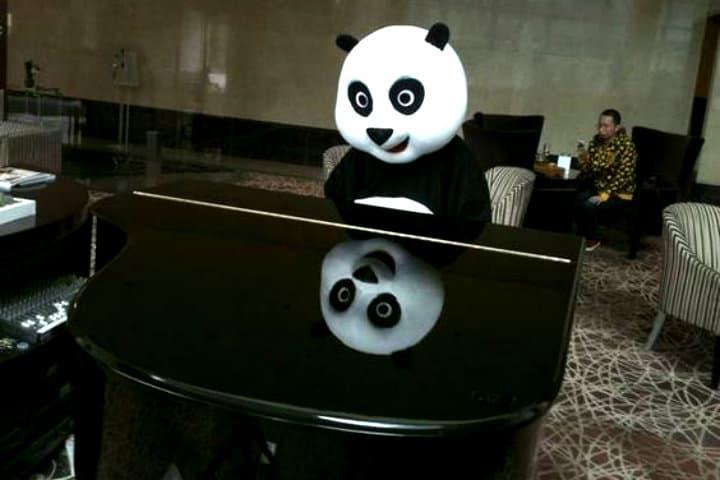 Primer Hotel Temático sobre Osos Panda The independent