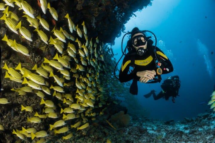 Bueceo en Islas Marietas Nayarit. Foto: Sebastian Pena Lambarri