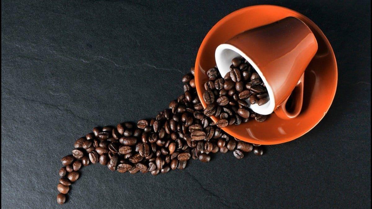 Granos de café. Foto: Christoph
