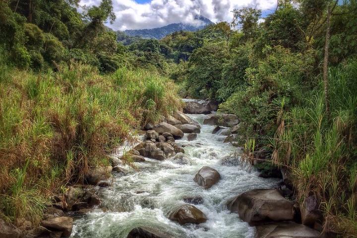 Río Chirripo