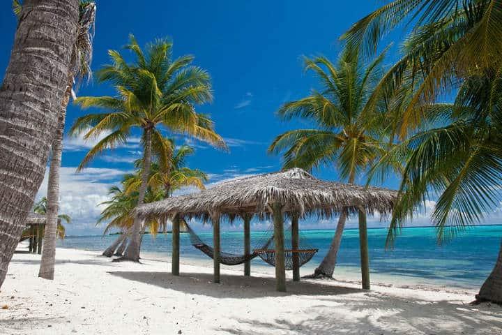Relájate y diviértete en Pequeño Caimán Foto SF Brit