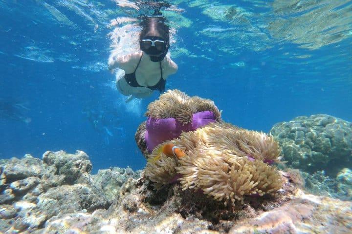 Snorkeling. Foto: Maja Novak