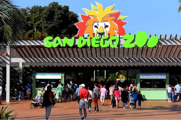 Times of San Diego San-Diego-Zoo-1280x720