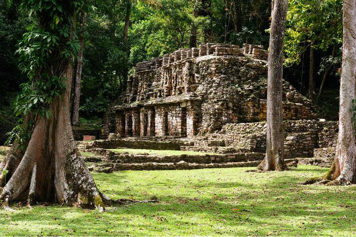 Yaxchilán Foto Portavoz Chiapas