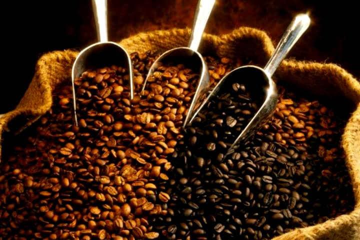 ruta del cafe chiapas emprendedores tv 2