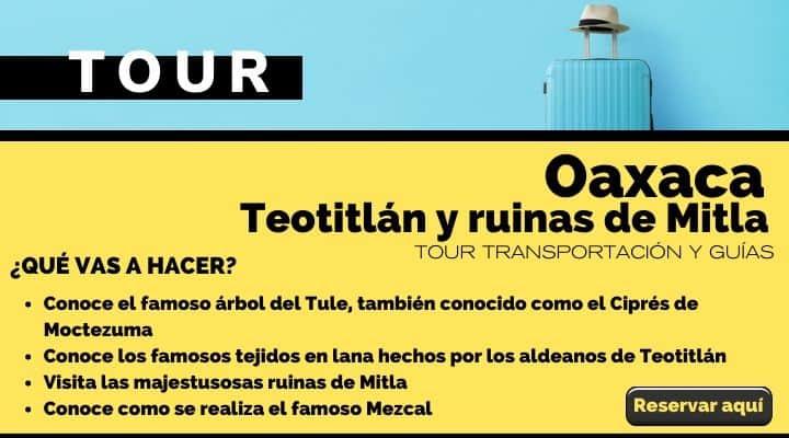 Tour Oaxaca, árbol del Tule, Teotitlán y ruinas de Mitla. Arte El Souvenir