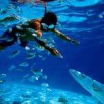 Snorkel en Mahahual. Foto Bacalar Travel & Adventure Tours.