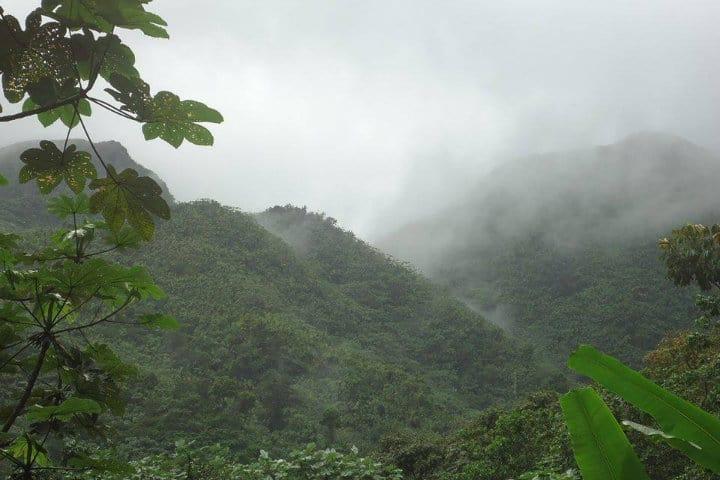 Bosque Nacional El Yunque. Río Grande. Foto Reyes Ester 3