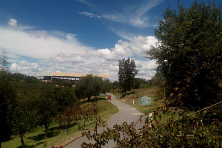 Cacaxtla. Tlaxcala. Foto. Estado de Tlaxcala 5