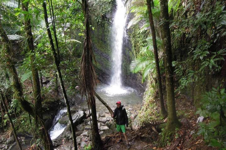 Caminata en el Bosque Nacional El Yunque. Foto Bob Thomas 4