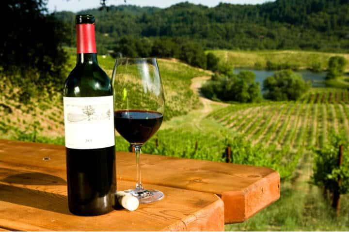 La ruta del vino en baja california. Foto Guía de México.