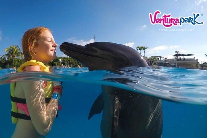 Nado con delfines. Foto: Ventura Park