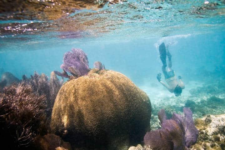 Paraíso del Caribe. Isla Contoy. Foto IC 1