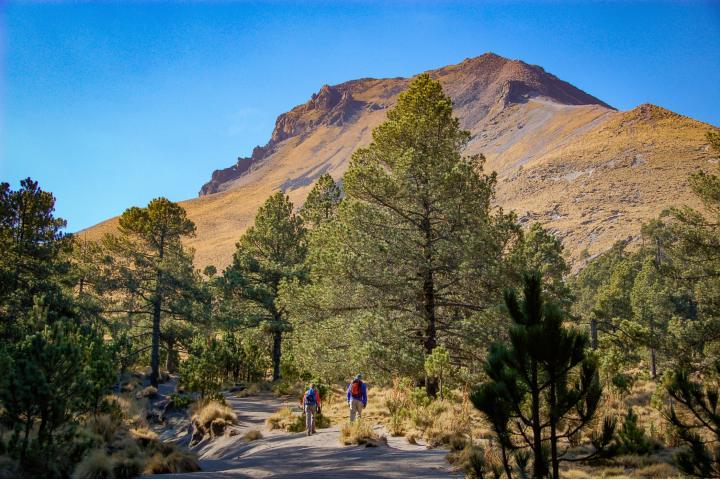Parque Nacional la Malinche Foto vandefoto com