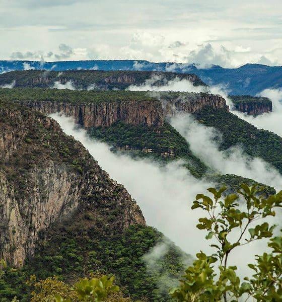Portada. Sierra del Nayar. Nayarit. Foto Daniel Stoychev 3