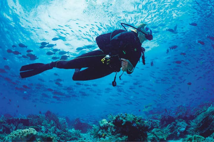Mar de Cortés. Foto Privilege Magazine.