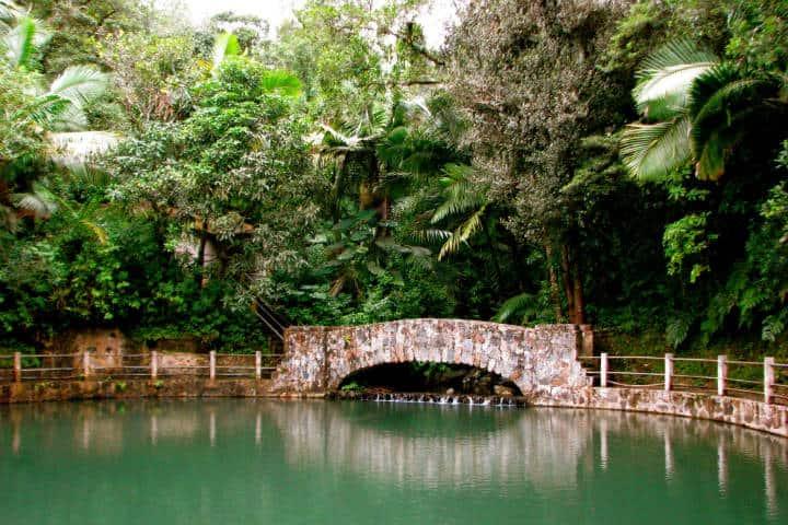 Río La Mina. Puerto Rico. Foto Jeff Gun 8