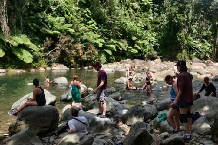 Río Mameyes. Puerto Rico. Foto El Yunque 7