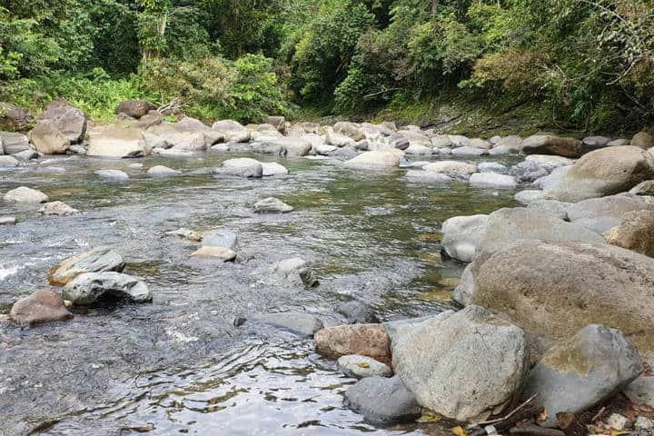 Río Mameyes. Puerto Rico. Foto Hector Sanchéz 7
