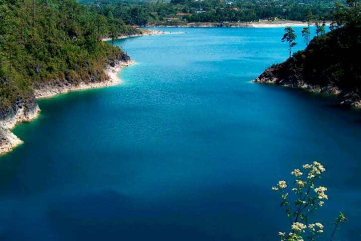 Reserva de la Biosfera Montes Azules. Chiapas. Foto. Corazón de Chiapas. 13