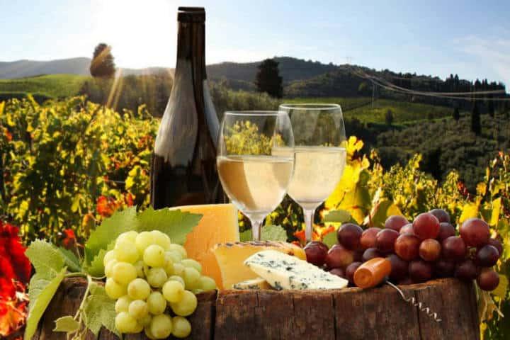 La ruta del vino Baja California. Foto Revista Vía México.