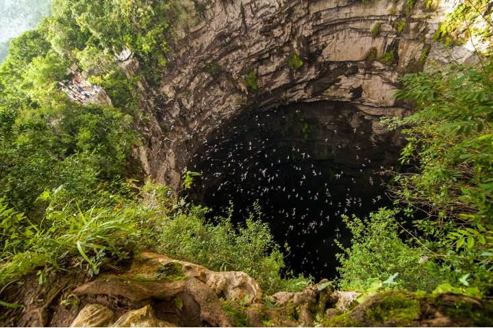 Sótano de las golondrinas en la Huasteca Foto enbici life (1)