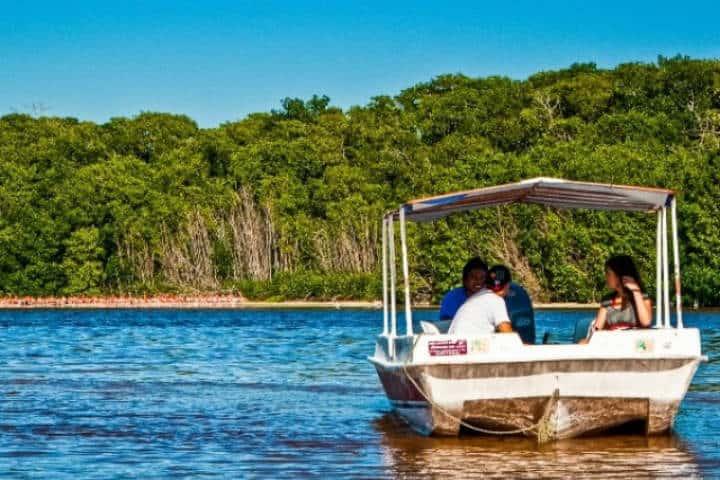 Tour a Isla Mexcaltitán.Nayarit.Foto.Wishbird.10
