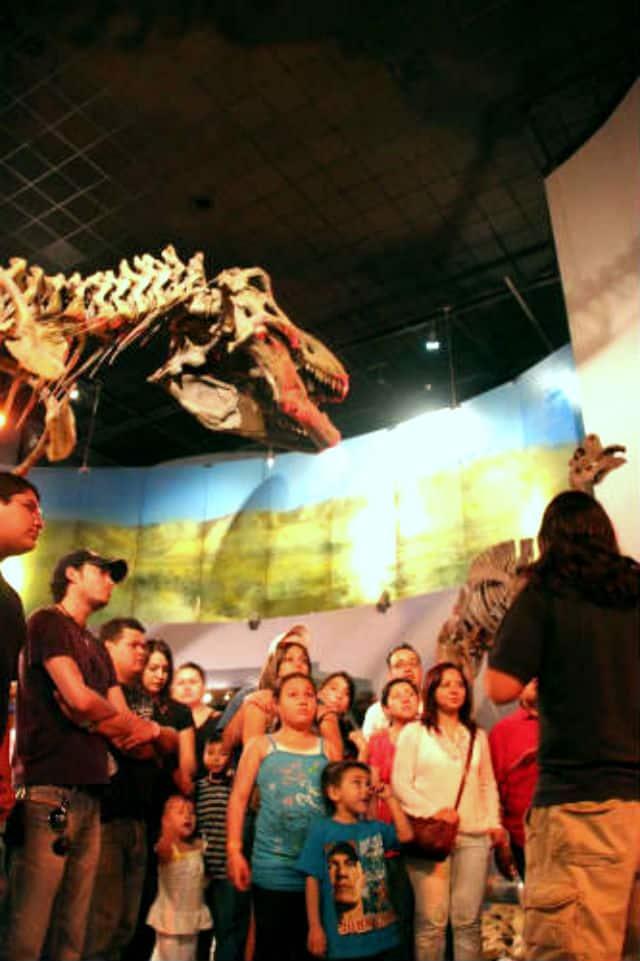 museo desierto03