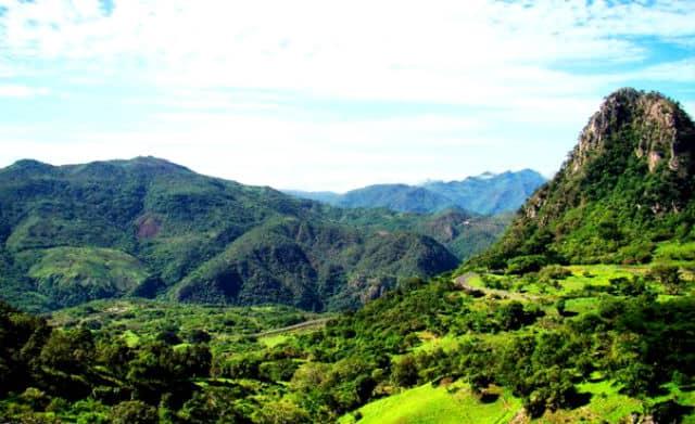 sierra nayar04