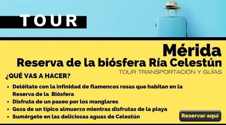 Tour Mérida Reserva de la Biósfera Ría Celestún. Arte El Spuvenir