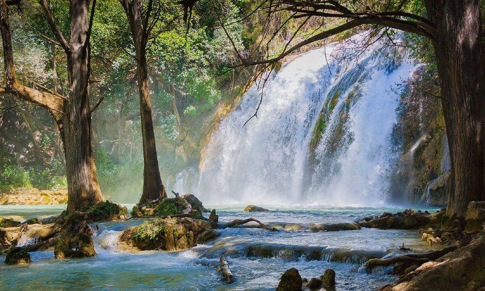 Chiapas. Foto: Carlos Alcazar