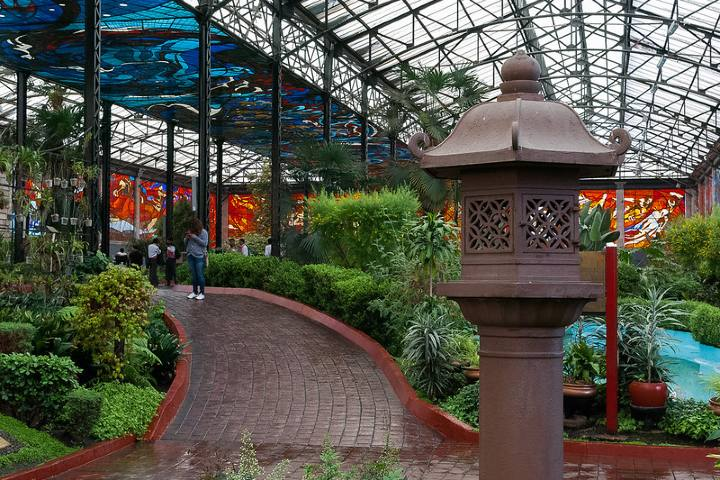 Cosmovitral Jardín Botánico. Foto: Gerardo Galíndez