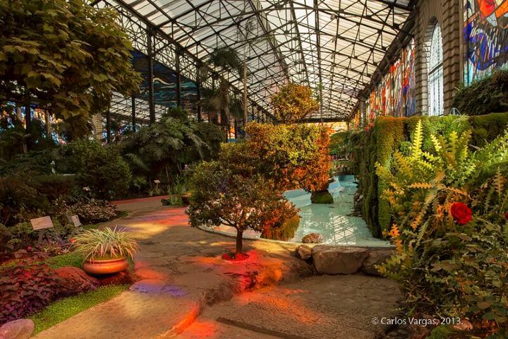 Cosmovitral Jardín Botánico. Foto: Carlos Vargas