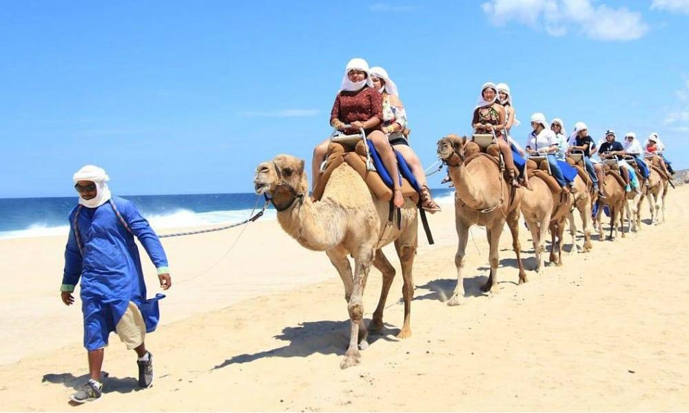 Disfruta de un pasea en camello en Los Cabos Foto Cabo San Lucas