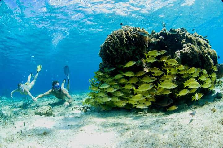 El Cielo en Cozumel. Foto Fideicomiso de Promoción Turística Cozumel & Riviera Maya.