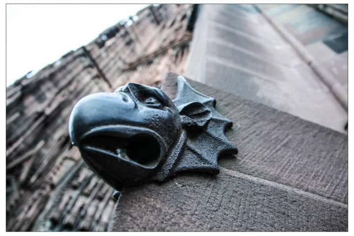 Gargouille en la Catedral de Strasbourg. Francia. Foto Francis Robert 3