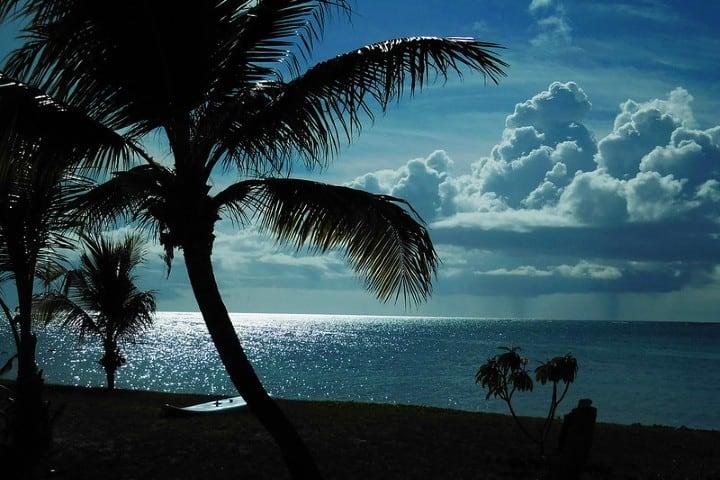 Isla de cocos. Foto: Yoshihiko Sano