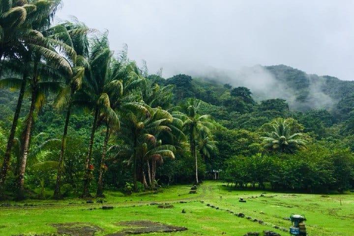 Isla del coco. Foto: GGD