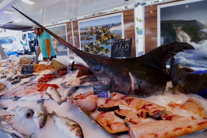 Mercado de pescado. Foto: catrina farrell Tour por Bahía de San Carlos