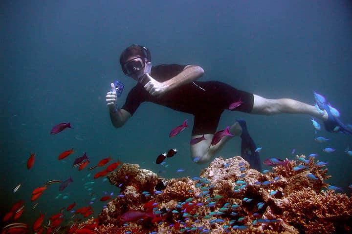 Podrás hacer snorkel a sus alrededores Foto Daku Resort Savusavu Fiji