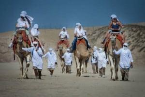 camellos loscabos06