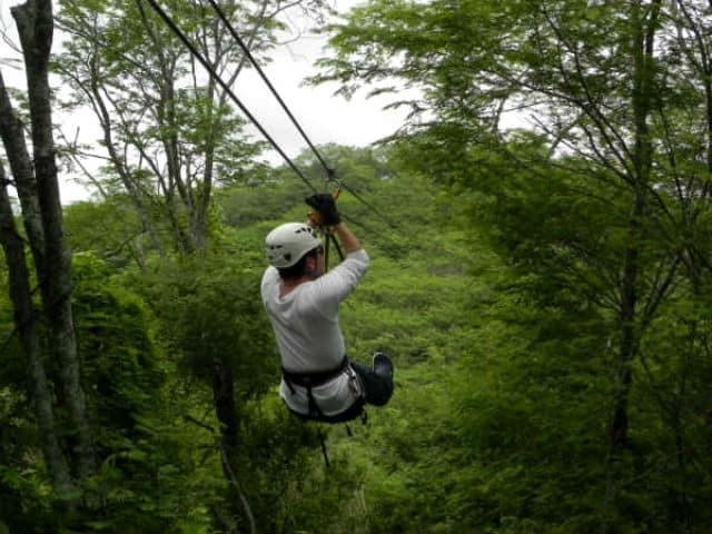 canopy huanacoa01