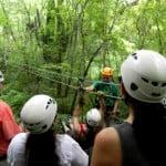 canopy huanacoa02