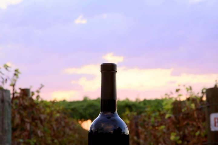 botella Foto Casa Madero