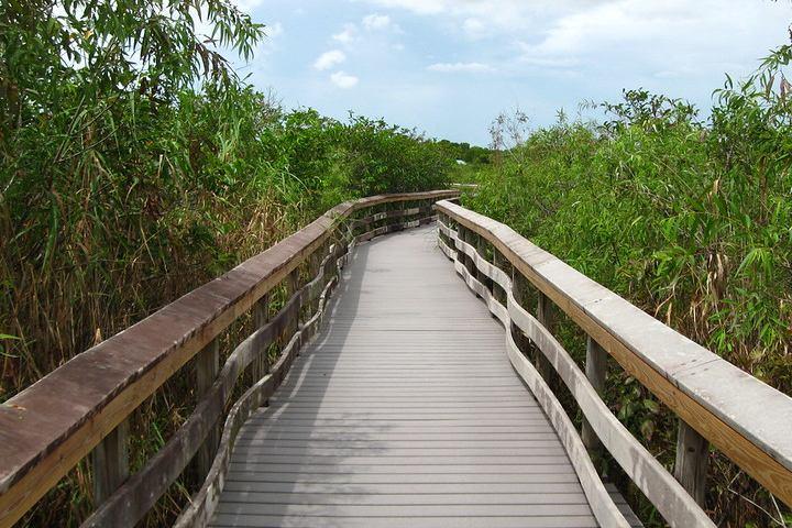 Anhinga Trail, Everglades en Florida